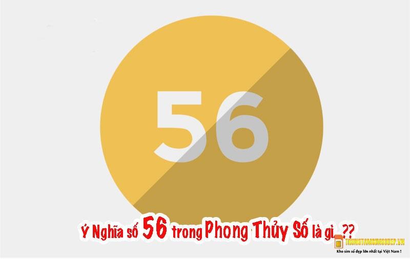 Ý nghĩa số 56 trong phong thuỷ sim
